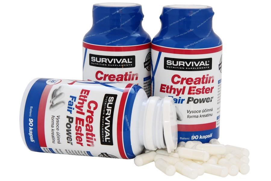 Creatin Ethyl Ester Fair Power 90 kapslí - Survival