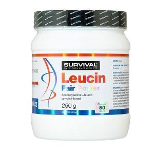 Leucin Fair Power 250g - Survival